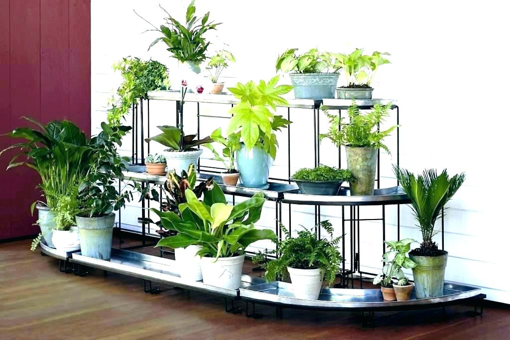 Wrought Iron Outdoor Plant Stands For Multiple Plants Marcuscable Com