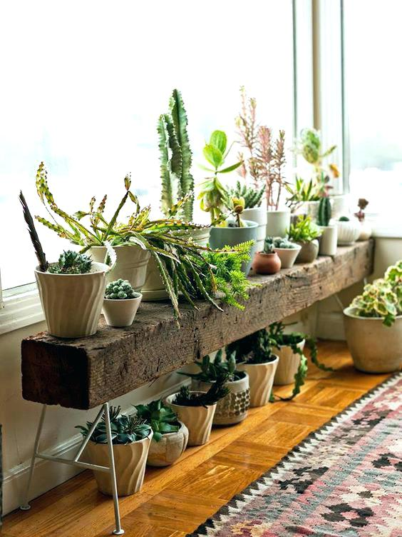 cheap diy plant stand ideas