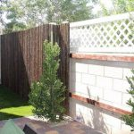 37+ Cheap Privacy Fence Ideas for Backyard & Front Yard