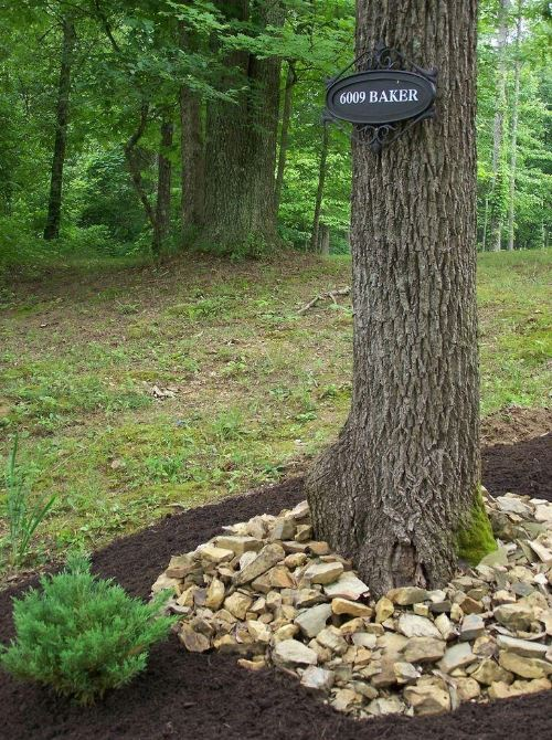 landscaping ideas around trees with rocks