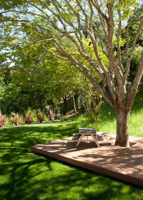 landscaping ideas around trees pictures