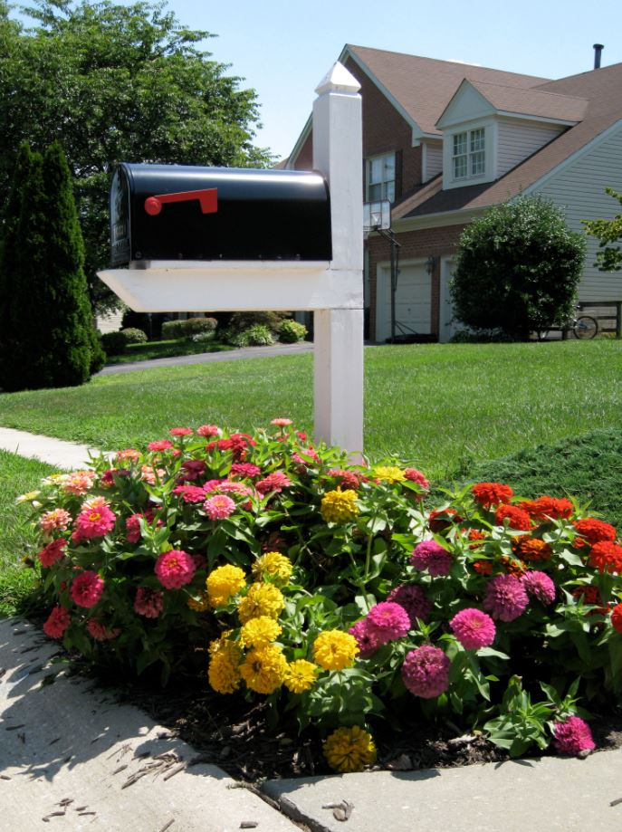 15 Simple Mailbox Landscaping Ideas With Rocks Flowers Nrb