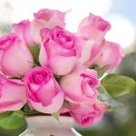 25+ Pretty Pink Flowers with Names and Pictures (Light, Bright, Small, Big)